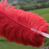 Wholesale Large Burlesque Fans - single layer Red Ostrich Feather Fan Large Feather Fan Burlesque friend 25 inch by 45 inch