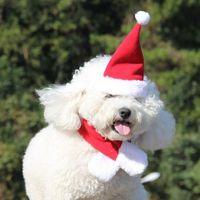 Wholesale Scarf For Dog Wholesale - 2017 New Fashion Pet Cat Dog Santa Hat+Scarf 2Pcs Costume Set Xmas Red Holiday Costume Christmas Decoration For Pet Dog Cat Decoration