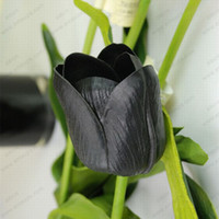 Wholesale 100pcs bag Bonsai Tulip Seeds Rare Black Tulip Flower Seeds Perennial Home Garden Potted Plants