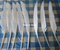 Wholesale Goose Hat Wholesale - white goose feathers turkey feathers jewelry craft hat mask decor feather 100pcs 20-30cm