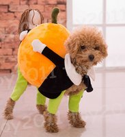 Wholesale Male Female Dolls - New Arrival Fashion pet clothes Funny clothes dummy dog moved pumpkin, pet alternative teddy dog, backpack to turns into a doll