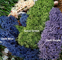 Wholesale glass dyes - 15 Gram Package Dry Preserved Dyed Lichen Moss For Terrarium Accessories Jewelry Supplies Diy Glass Bottle Flowers Deoration