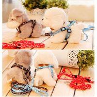 Wholesale Kitten Cat Harness Lead - Top Pet Nylon Harness Collar Leash Lead For Small Dog Puppy Cat Rabbit Kitten Rope Hot Sale Dog Leash