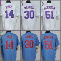 Wholesale Retro 51 Blue - Montreal Baseball Jerseys 2016 Retro 30 Tim Raines 51 Randy Johnson 14 Pete Rose Jersey Throwback Home Road Away Blue White