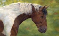 Wholesale Giclee Wall Art - Giclee Animal colorful Horse oil painting arts and canvas wall decoration art Oil Painting on Canvas Poll Meet Atlas 864