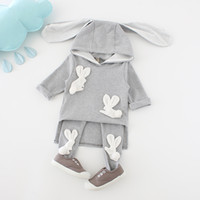 Wholesale Cartoon Cute Girl Suits - Cartoon Baby Girls Clothing Sets Fashion Bunny Ear Toddler Hooded Outfits Casual Sports Sets Autumn Tops + Tights 2pcs Suits C2528