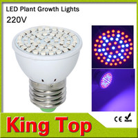 Wholesale Led Flowers Wholesale - Wholesale-New Full Spectrum E27 15W 41 Red +19 Blue Led Grow Lamps For Flowering Plant and Hydroponics Outdoor Lighting