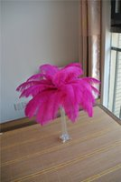 Wholesale Ostrich Feather Centerpiece Pink - wholesale 100pcs 12-14inch Hot pink Ostrich Feather Plumes for Wedding centerpiece christmas feather decor wedding table decor party decor