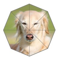 Wholesale Dog Umbrella Free Shipping - Wholesale-Free Shipping fashion animal Foreign Dog Best Transparent Umbrella