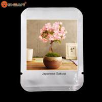 ingrosso pianta di sakura-10 pz / lotto Giapponese Sakura Seeds, Bonsai Flower Cherry Blossoms Ornamental-plant