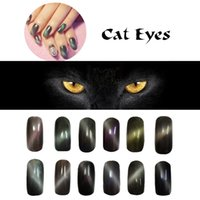 Оптово-2g / box 12 цветов Новый эффект кошачьего эффекта Magic Mirror Chrome Powder Nail Art Magnet Powder Pigment Dust Nail Art Tip Decoration