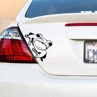 kurbağa araba çıkartmaları toptan satış-FROG ARABA Vinil Sticker Çıkartma JDM Tampon Pencere Duvar Araba HQ Herhangi Pürüzsüz Yüzey