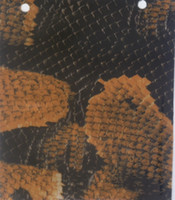 Wholesale Vinyl Transfer Stickers - CARKIN CARBON FIBER ANIMAL SKIN SKULL CAMOUFLAGE WOODGRAIN CARTOON HYDROGRAPHICS WATER TRANSFER PRINTING FILM FRO HYDRO DIPPING