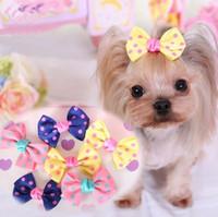 pelucas de gatos al por mayor-10 Unids / lote Moda Accesorios Para El Cabello Para Mascotas Yorkshire Chihuahua Peluca Peluquería Punto Barrettes Para Pequeños Gatos y Cachorros 2 Tamaños
