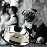 Wholesale Wholesale Ceramic Pet Dishes - 1 x STAINLESS STEEL Standard Pet Dog Puppy Cat Food or Drink Water Bowl Dish