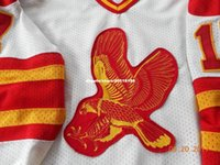 Costume barato INTERNATIONAL HOCKEY LEAGUE JERSEY SALT LAKE CITY FALCONS COLLECTORS ITEM stitched Jersey de hóquei masculino