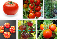Vagetable Seeds black pear tomato - 100pcs KINDS Tomoto Seeds mixed packed Purple Black Red Yellow Green Cherry Peach Pear Tomato Seed Organic Food for Garden