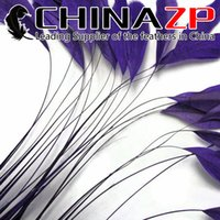 Wholesale Wholesale Coque Tail Feathers - CHINAZP Crafts Factory 100pcs lot 10~15cm (4~6inch) Length Selected Prime Quality Dyed Eggplant Stripped Coque Rooster Tail Feathers