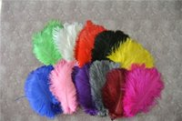 Wholesale Turquoise Lime Orange - Wholesale 100 pcs 5-8inch white orange black Hot Pink yellow royal blue turquoise lime green purple burgudy ostrich feather plumes