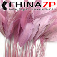 Wholesale led light strip online - Leading Supplier CHINAZP Crafts Factory cm inch Top Quality Dyed Light Pink Stripped Rooster Coque Tail Feathers