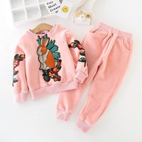 Wholesale Thick Black Girl Clothes - Kids Girls Winter Sets Baby Girls Thick Cartoon Embroidery T-shirt + Pants 2pcs Suits 2018 Infant Princess Warm Outfits Children Clothing