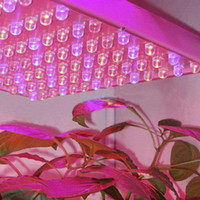 Wholesale 225 LED V Full Spectrum Hydroponic Grow Light Plant Grow Light led grow growth lights Red Blue