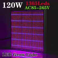 Wholesale Fruit Vegetables Lamp - 1365pcs SMD 120W 1131Red + 234Blue LED Grow Lights Hydroponics Flower Fruit Vegetable Greenhouse LED Plant Lamp AC 85~265V Grow Panel Light