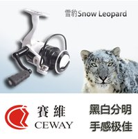 Wholesale Spinning Baitcasting Reels - Spinning Reel Snow Leopard 10+1BB 2000 Saltwater Baitcasting Reel Boat Fishing Reel Fresh Water Reels Fish Coil Tackle 2017 FREE SHIPPING