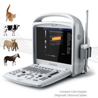 Wholesale new color laptops online - New animal system A6 VET ultrasound doppler with color ultrasound scanner veterinary ultrasound laptop echo