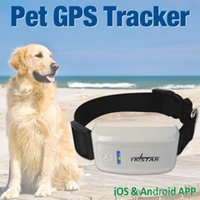 Wholesale Gps Chip Tracking - Mini GPS Tracker with Collar Waterproof Real Time Locator Rastreador Localizador Chip for Pets Dogs Perro Pigs Tracking Geofence A3*