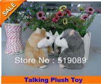 Wholesale Plush Recorder - Free Shipping Russia Hamster Copy Voice Pet Recorder Talking Plush Toy,15cm Learning Talking Hamster Plush Toy For Kids