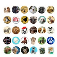Wholesale Dog Buttons - newest DOG snap button jewelry charm popper for bracelet 30pcs   lot GL047 noosa,jewelry making supplier