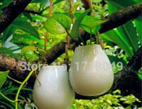 Wholesale Wholesale White Ceramic Vase - set of 2 Europe style white egg shaped vase,hanging wall planter ceramic planter pots for garden decor house ornament gifts for friends