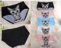 Wholesale Animal Sexy Hot - Hot Sexy Women's Underwear with Cute kitten Cat Kitty Preven Bottom-baring Private Safe Pants One Site Fit XS S M F130 30pcs