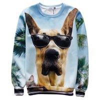 Wholesale Dog Sweat Shirts - Wholesale-Raisevern 2015 new casual streetwear hoodies funny glasses dog print 3d sweatshirt O-neck sport suit sweat shirts pullovers