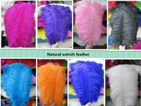Wholesale Decorative Black Feathers - 50pcs 35-40cm 14-16inch high quality precious ostrich feathers U Pick color Weddingt Variety of decorative