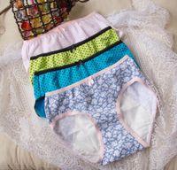 Wholesale Panties Used - New Women Menstruation Period Night Use Briefs Cotton Underwear Women Physiological Briefs Anti-leakage Panties M-3XL 2pcs lot