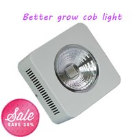 Wholesale Apollo Grow - Full Spectrum apollo 100w with reflector High Par value led grow light for plant hydroponics grow
