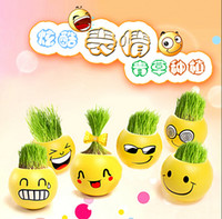 Wholesale Grass Pots - QQ expression mini plants magic grass planting bonsai green plants potted gift Flower Seeds 111g 6.5 cm CYB58