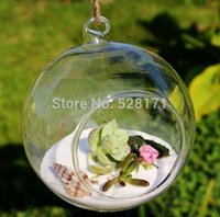 Wholesale Air Plants Free Shipping - Free Shipping 8 Pcs  Lot 12cm Diameter Hanging Round Glass Air Plant Terrariums Bubble Crystal Balls Flower Globe Vase