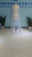 Wholesale Three Layer Cathedral Veil - Real Image One Layer Three Meters Long Bridal Veils Lace Sequined Appliqued Edge Cathedral Tulle Cheap Crystals Beads Wedding Veil With Comb