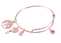 Wholesale october party - New Arrive Hotsale 5PCS Fashion bracelet bangle September October Birthstone Charm Rose Gold Color Bangle Bracelet