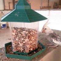 ingrosso decorazione del giardino degli uccelli-23x20x20cm Plastica Mangiatoia per uccelli selvatici Mangiatoie per uccelli all'aperto Contenitore per alimenti Gazebo sospeso Mangiatoia per uccelli Perfetto per la decorazione del giardino