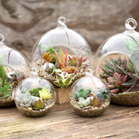 Wholesale wholesale glass hanging terrariums - 8 cm 10 cm Creative Hanging Glass Vase Succulent Air Plant Display Terrarium,Hanging Live Plant Glass Terrarium Orbs
