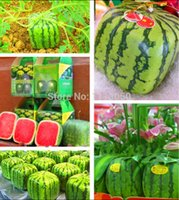 Wholesale 30pc Outdoor Plants Fruit Seeds Simple Geometric Square Watermelons Seeds Summer fun