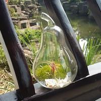 ingrosso succulente-Portacandele per terrari e piante in vetro a forma di mela / pera, fioriera per piante grasse, decorazioni per la casa, materiali da giardino, decorazioni per la casa