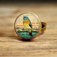 Wholesale Photo Engagement Ring - R16-Eastern Bluebird Necklace Glass Dome Pendant Picture Pendant Photo Pendant Handcrafted Jewelry