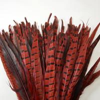penas do faisão vermelho venda por atacado-O envio gratuito de 100 pçs / lote 12-14 polegada (30-35 cm) Red Ringneck Faisão de Cauda penas Um penas de faisão de qualidade Traje de Penas para decoração