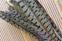 Wholesale Pheasant Hat - Wholesale 100pcs 12-14inch natural color ringneck pheasant tail feather pheasant feather for costume decor weddings crafs hat decor