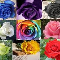çok yıllık çiçekler için tohumlar toptan satış-100 adet / grup Çok Yıllık Nadir Gül Çiçek Tohumları Lover Bitki Çöl Bonsai Bahçe Malzemeleri Tencere Yetiştiricilerinin